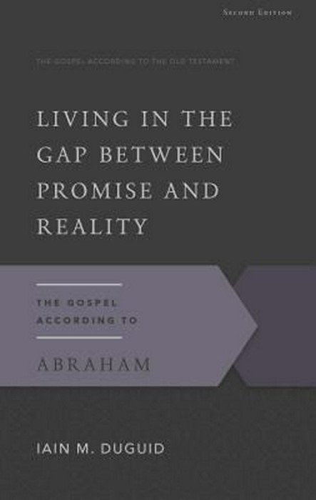 Living in the Gap Between Promise and Reality (Paper Back)