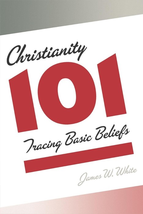 Christianity 101 (Paperback)
