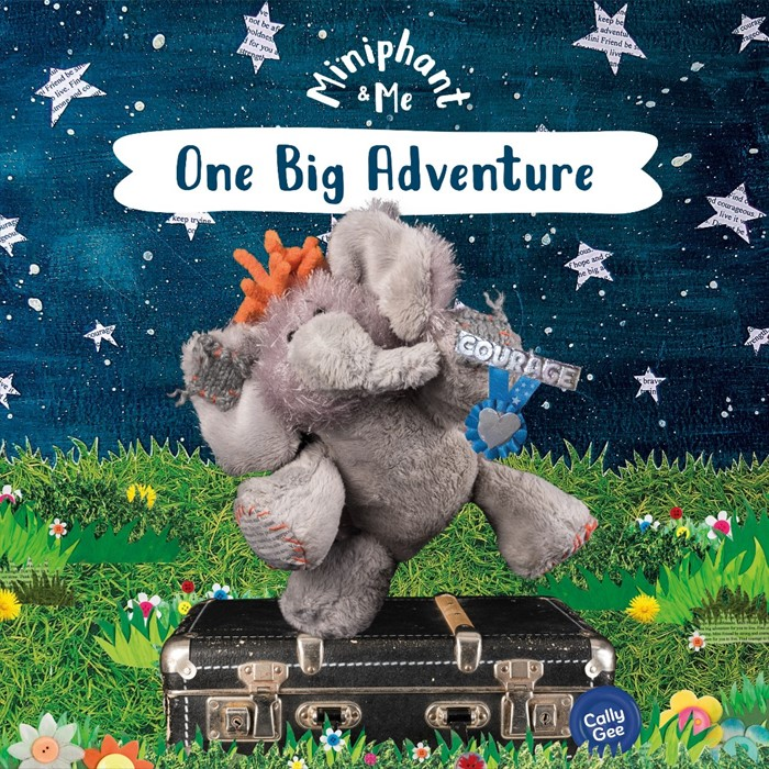 One Big Adventure (Paperback)