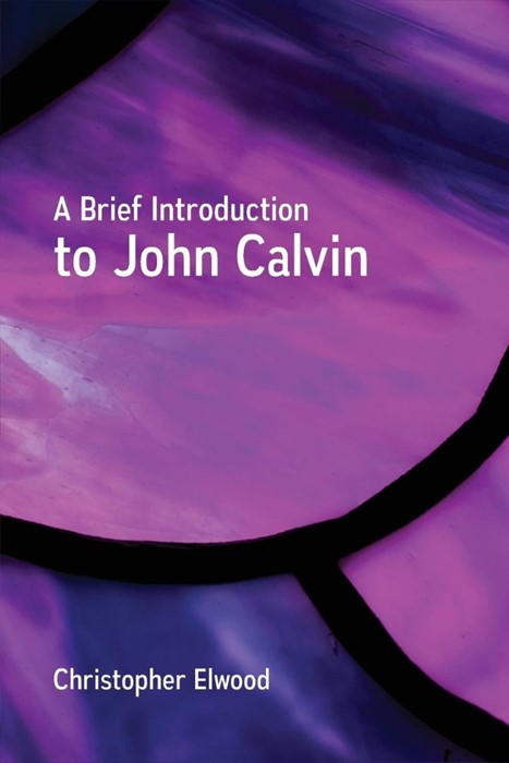 Brief Introduction to John Calvin, A (Paperback)