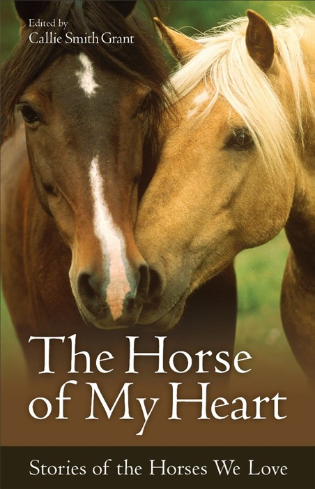 The Horse Of My Heart (Paperback)