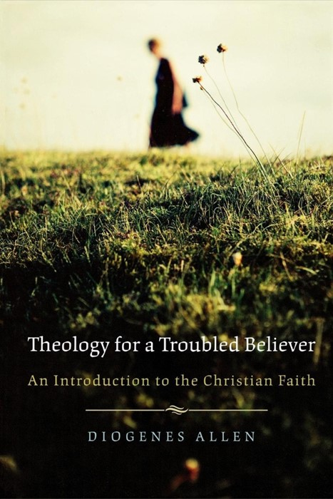 Theology for a Troubled Believer (Paperback)