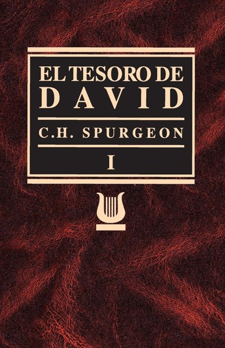 Tesoro de David Volumen I (Paperback)