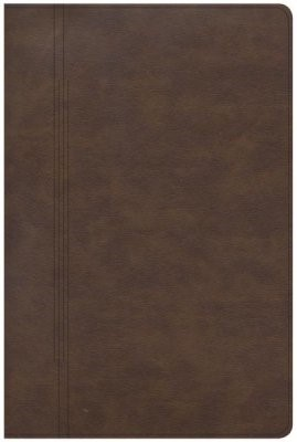 CSB Life Restoration Bible, Brown LeatherTouch (Imitation Leather)