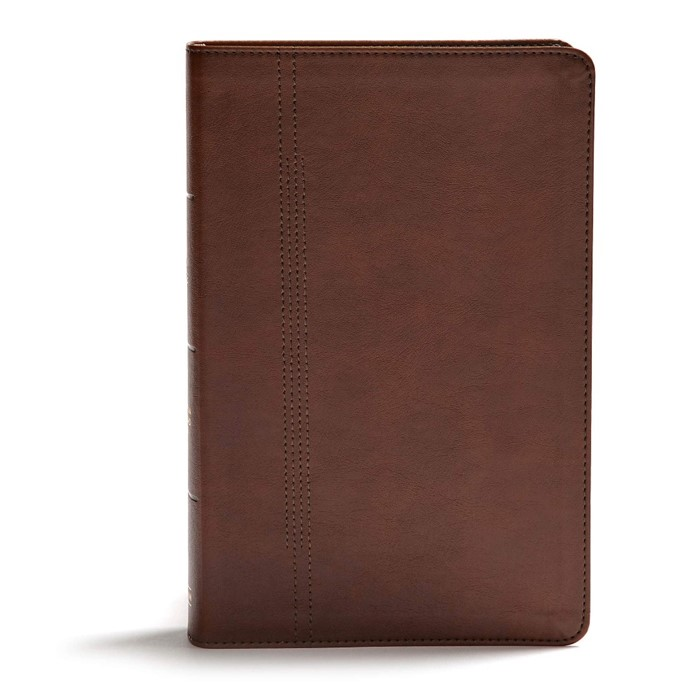 CSB Life Restoration Bible, Brown LeatherTouch, Indexed (Imitation Leather)