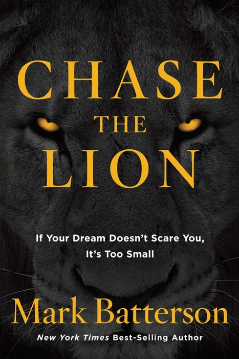 Chase The Lion (Paperback)