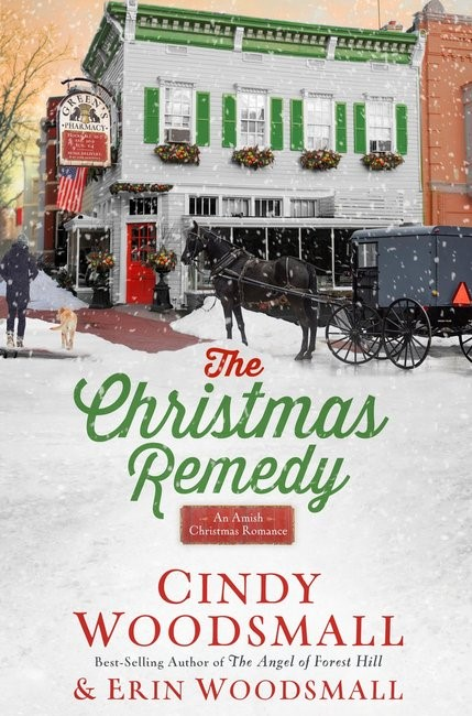 The Christmas Remedy (Hard Cover)