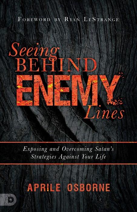 Seeing Behind Enemy Lines (Paperback)