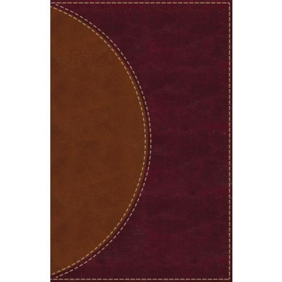 Amplified Reading Bible, Leathersoft, Brown, Indexed (Imitation Leather)