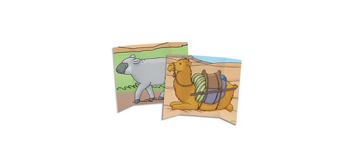 Camel/Sheep Tri-fold (General Merchandise)