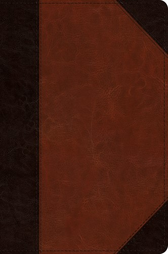 ESV Journaling New Testament Inductive Edition, Brown (Imitation Leather)
