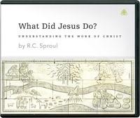 What Did Jesus Do? CD (CD-Audio)