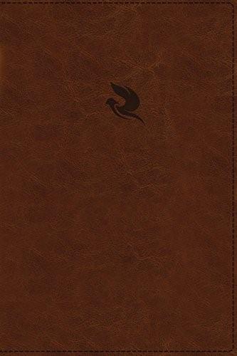 NKJV Spirit-Filled Life Bible, Brown, Red Letter Ed. (Imitation Leather)