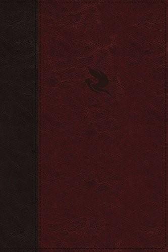 NKJV Spirit-Filled Life Bible, Burgundy, Indexed, Red Letter (Imitation Leather)