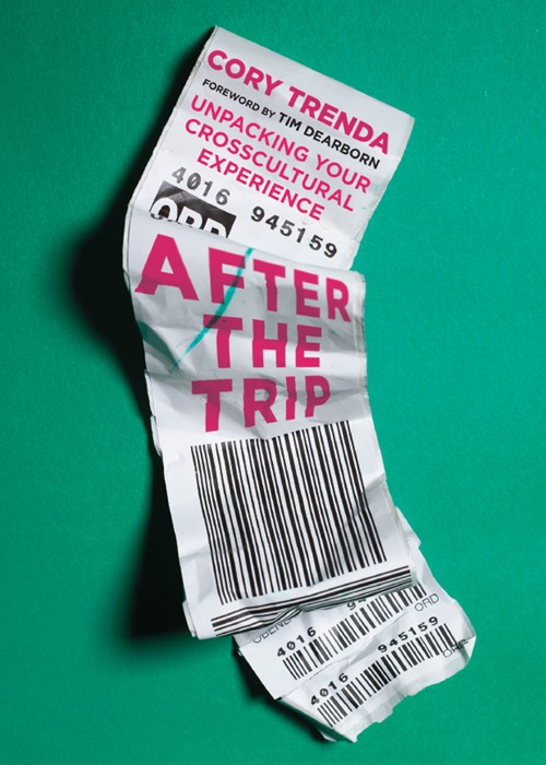 After The Trip (Paperback)