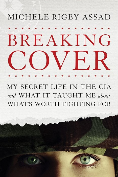 Breaking Cover (Paperback)