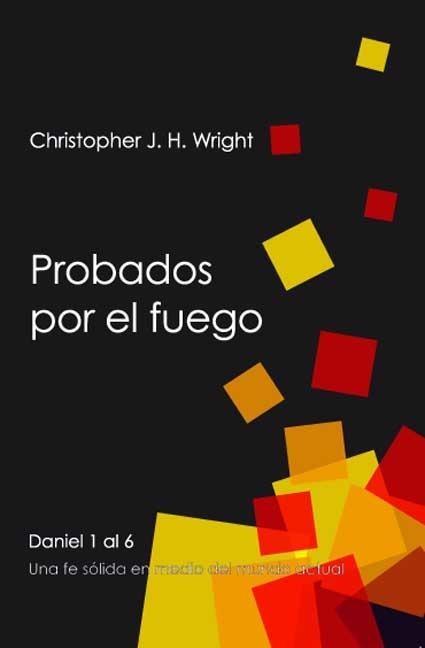 PROBADOS POR EL FUEGO (Paperback)