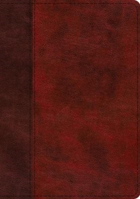 ESV Study Bible, TruTone, Burgundy/Red, Timeless Design (Imitation Leather)