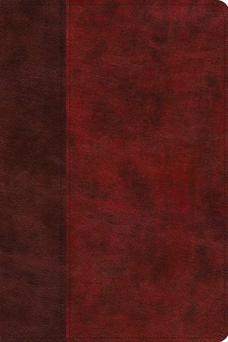 ESV Gospel Transformation Study Bible (Imitation Leather)