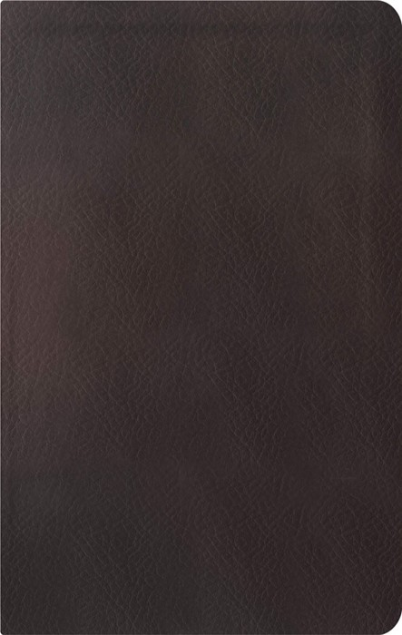 ESV Reformation Study Bible (Imitation Leather)
