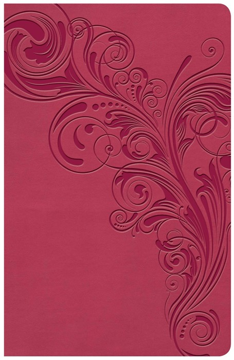 KJV Large Print Personal Size Reference Bible, Pink (Imitation Leather)