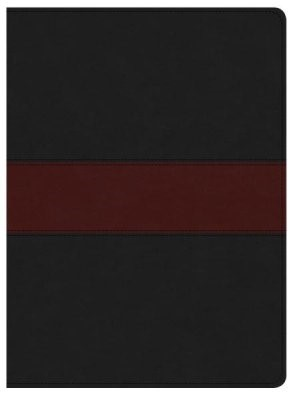 KJV Apologetics Study Bible, Black/Red Leathertouch Indexed (Imitation Leather)