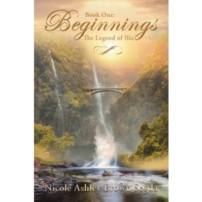 Book One: Beginnings (Paperback)