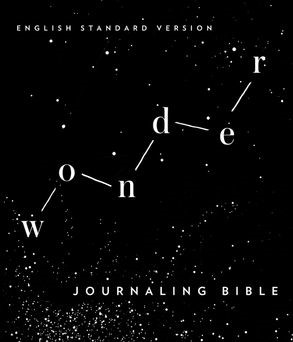 ESV Wonder Journaling Bible (Hard Cover)