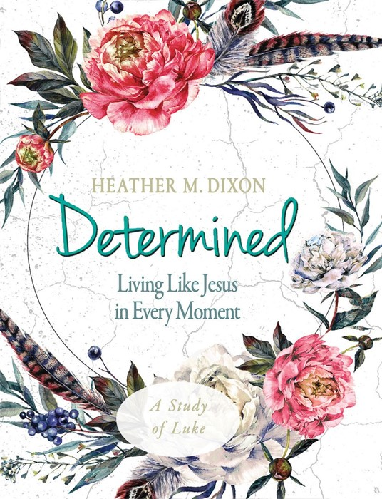 Determined - Women's Bible Study Participant Workbook (Paperback)