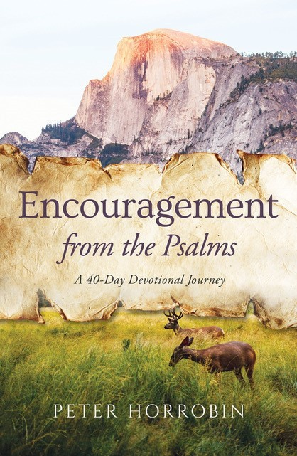 Encouragement From The Psalms (Paperback)
