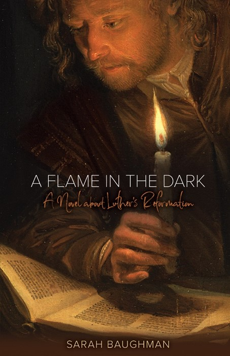 Flame In The Dark, A (Paperback)