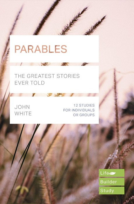 Lifebuilder: Parables (Paperback)