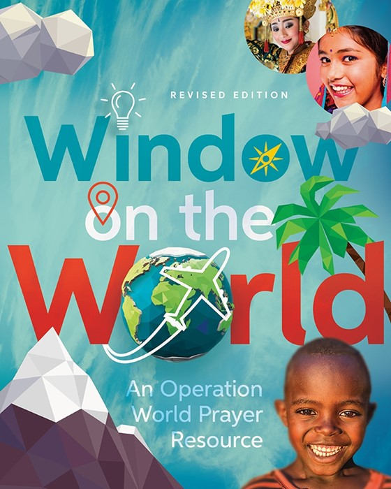 Window On The World (Paperback)