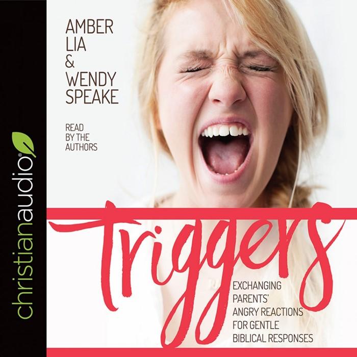 Triggers Audio Book (CD-Audio)