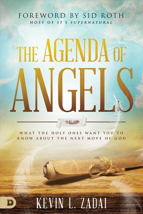The Agenda of Angels (Paperback)