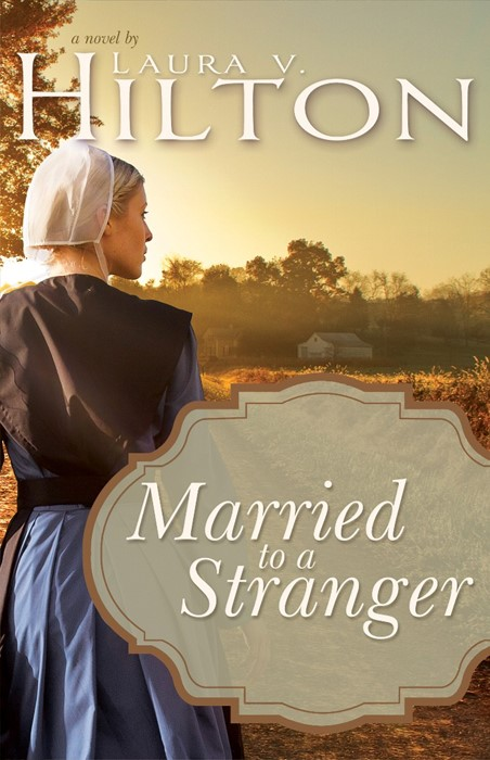 Married to a Stranger (Paperback)