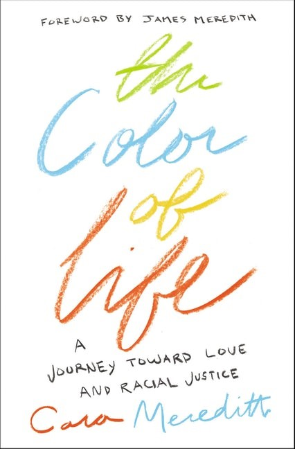 The Color Of Life (Paperback)