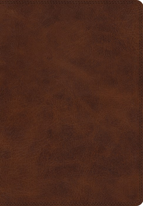 ESV Giant Print Bible, TruTone, Deep Brown (Imitation Leather)