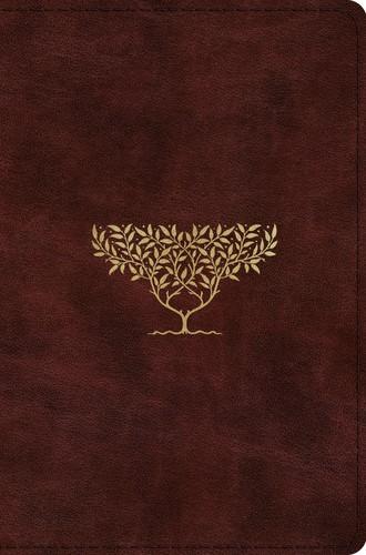 ESV Compact Bible, TruTone, Burgundy, Olive Tree Design (Imitation Leather)
