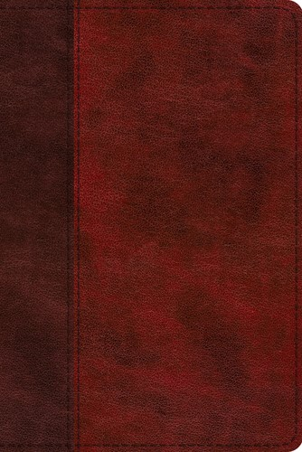 ESV Study Bible, Personal Size, TruTone, Burgundy/Red (Imitation Leather)