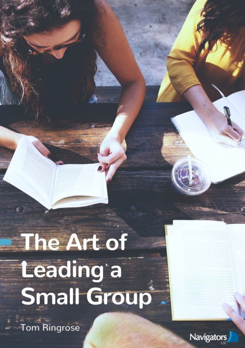 The Art Of Leading A Small Group (Paperback)