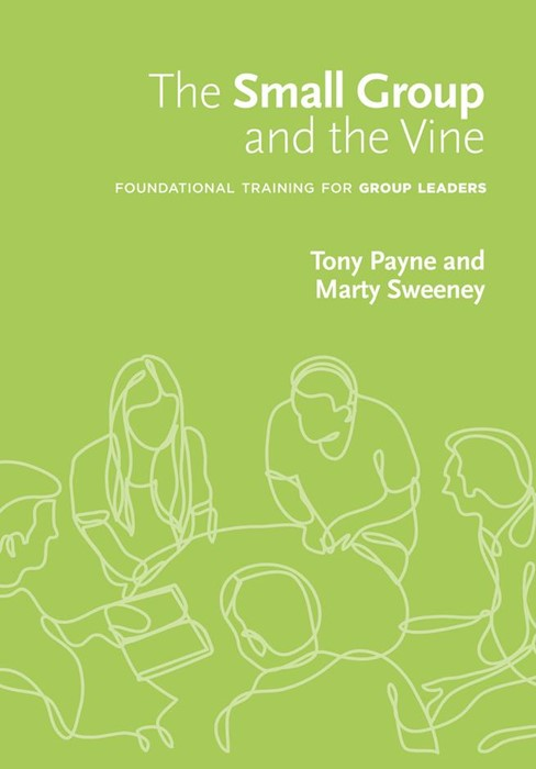 The Small Group And The Vine (Paperback)