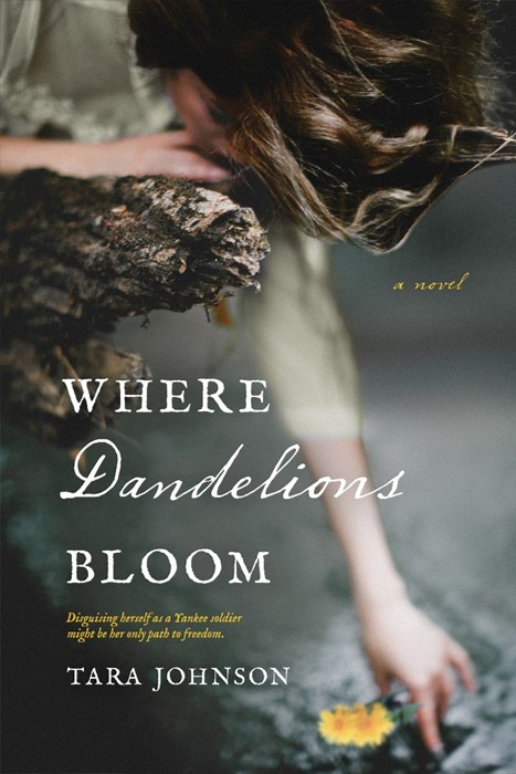 Where Dandelions Bloom (Paperback)