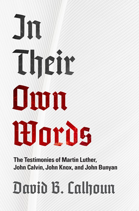 In Their Own Words (Paperback)
