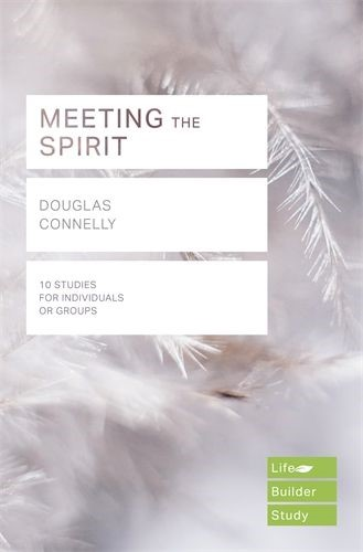 LifeBuilder: Meeting The Spirit (Paperback)