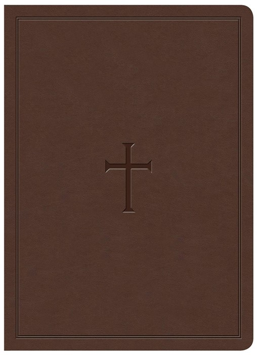KJV Study Bible, Brown LeatherTouch