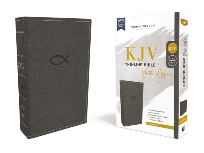 KJV Thinline Bible, Youth Edition, Gray, Red Letter (Imitation Leather)