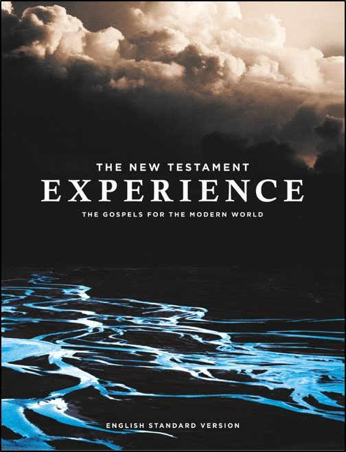 The New Testament Experience (Paperback)