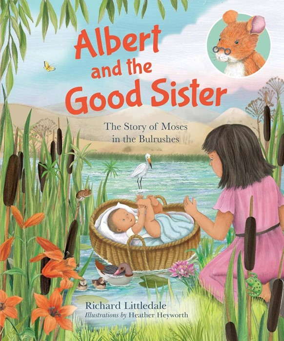 Albert and the Good Sister (Hard Cover)
