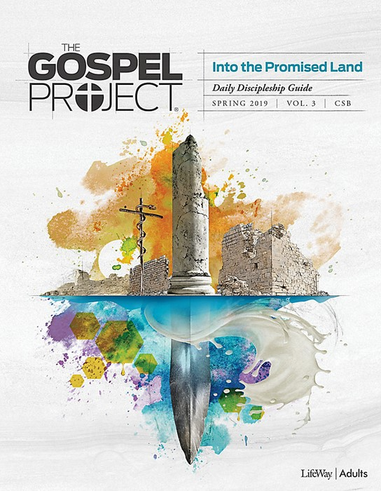 Gospel Project For Adults: CSB Discipleship Guide, Spring 19 (Paperback)